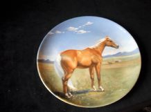 COLLECTABLE DISPLAY PLATE SPODE 1988 LTD ED AMERICAN QUARTERHORSE SUSIE WHITCOMB